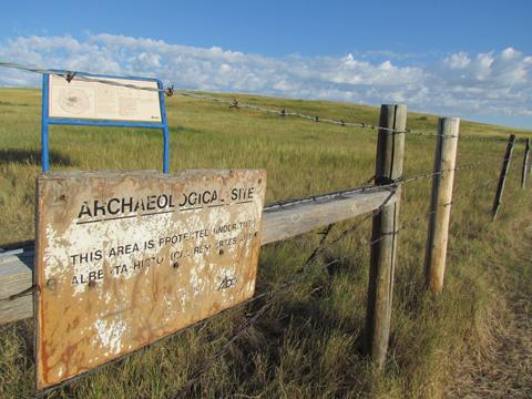 The government of Alberta has protected 16 hectares at the site.