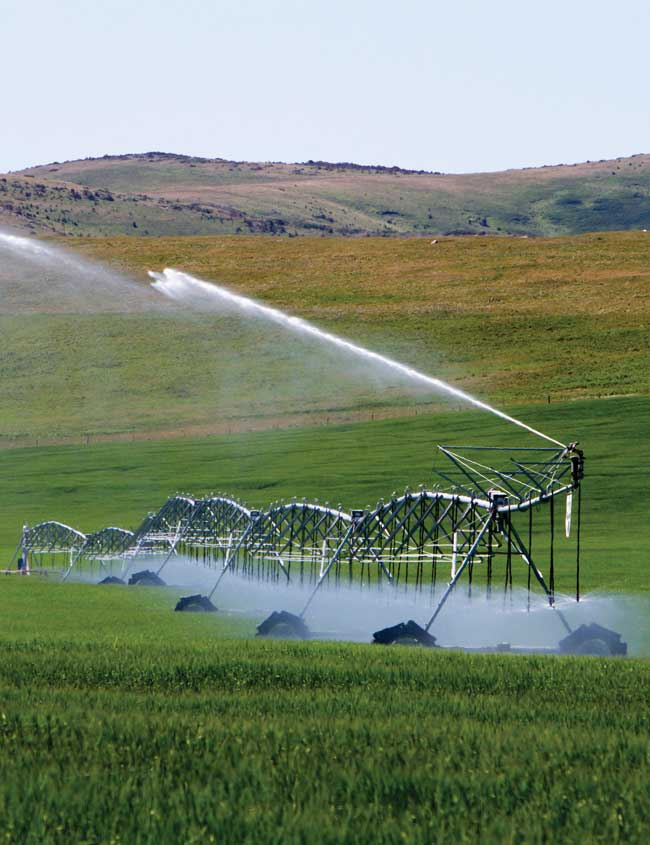 irrigation-for-home